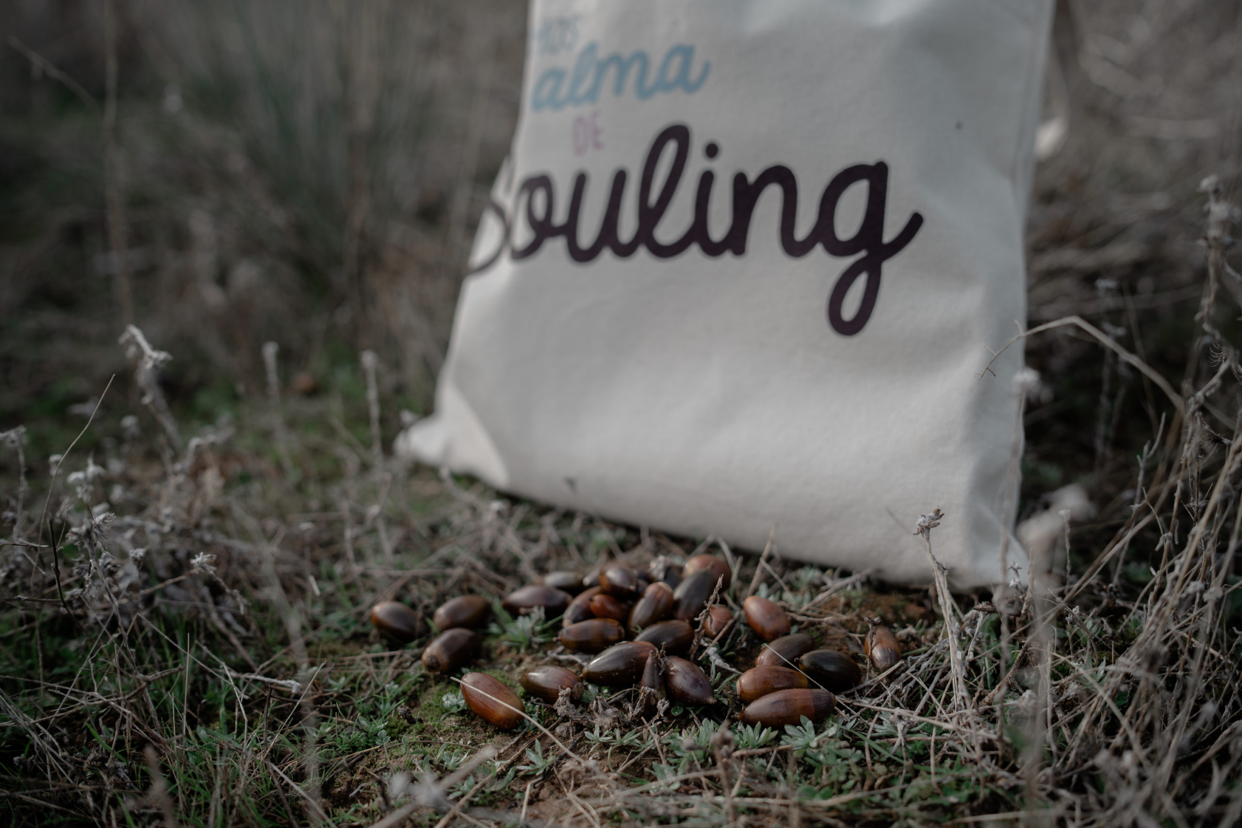 SOULING · #palabraconalma